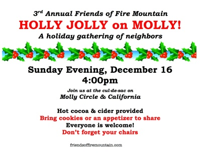 3rd Annual Holly Jolly on Molly copy